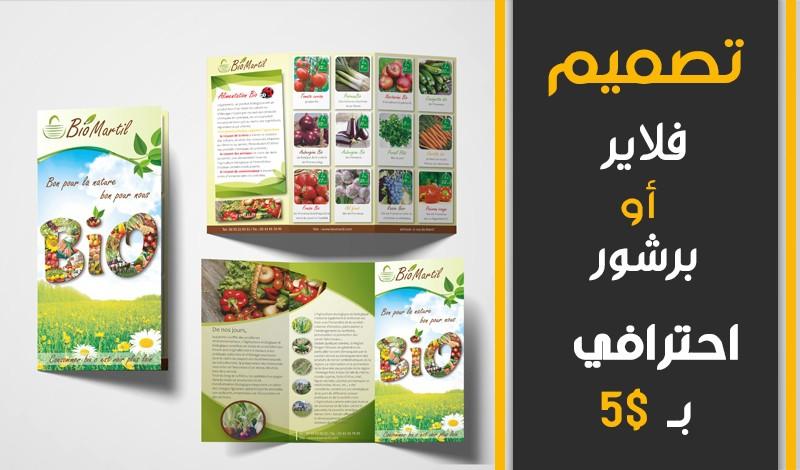 إجلان أمتيو - تصميم بروشورات و شعارات و كتب و مجلات و فلايرات و بطاقات عمل - المغرب - 39+